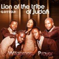 Lion of the Tribe of Judah (LOTTOJ)